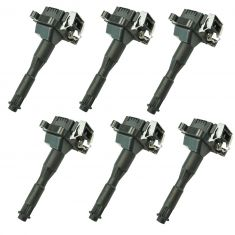 95-03 BMW 3, 5, 7, 8, X, Z Series Plug Mounted Ignition Coil (Delphi) Set of 6